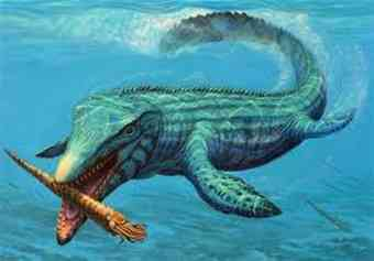 Giant prehistoric fish fossil with reptile flipper in ...